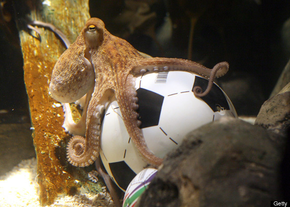 PAUL-THE-OCTOPUS-AGENT